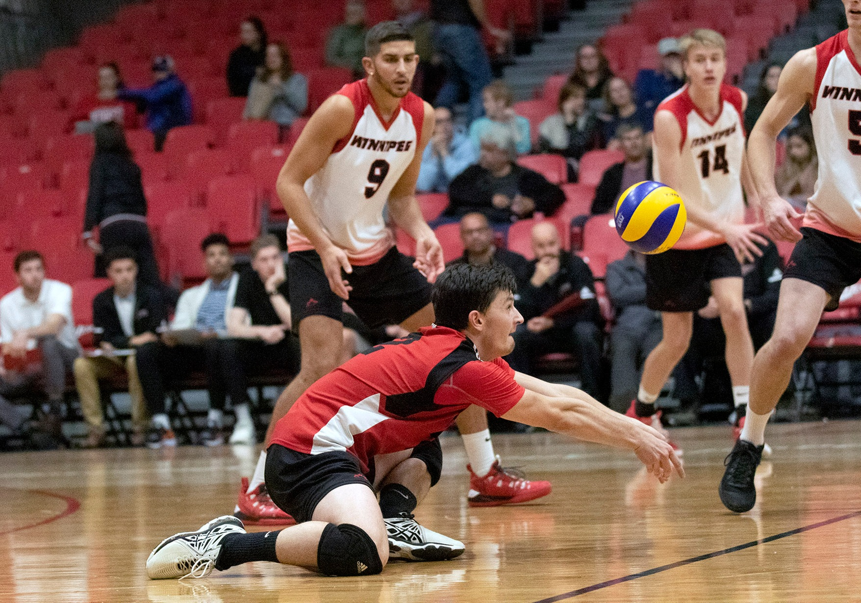 Darian Picklyk had a match-high seven digs for the Wesmen men's volleyball team during a loss at Alberta Saturday night. (David Larkins/Wesmen Athletics file)