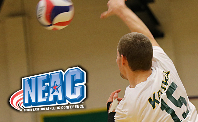 Connor Gail Earns NEAC Player of the Week