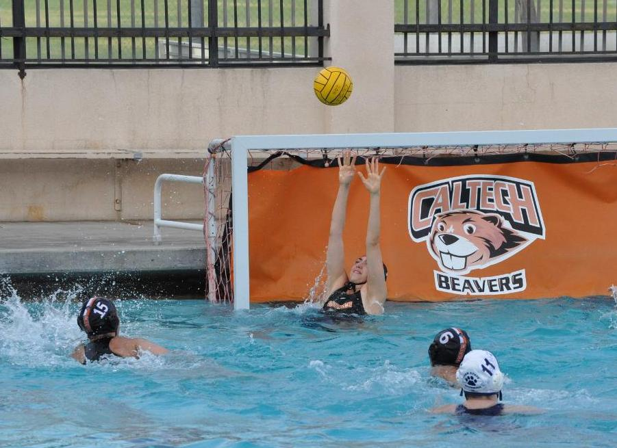 Zemsky, Wong Pace Women's Water Polo to Season High in Steals at CMS