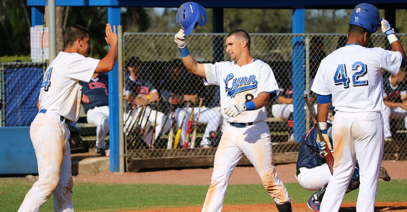 Baseball Splits First Two Games Against Cougars