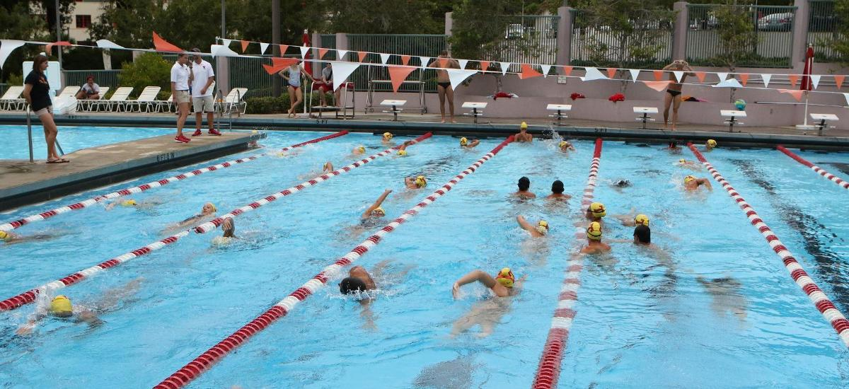 Spartan Swim Programs Earn Top 25 Rankings University Of Tampa Athletics