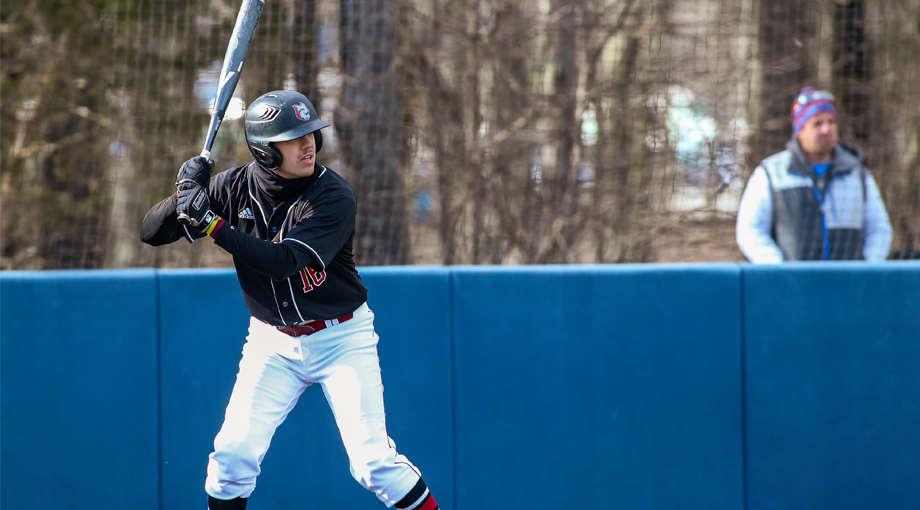 Baseball Flown Past by Owls