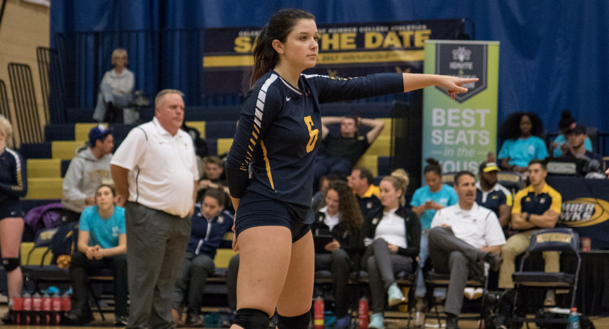 HAWKS BLOW OUT LAST PLACE VIPERS IN THREE STRAIGHT SETS