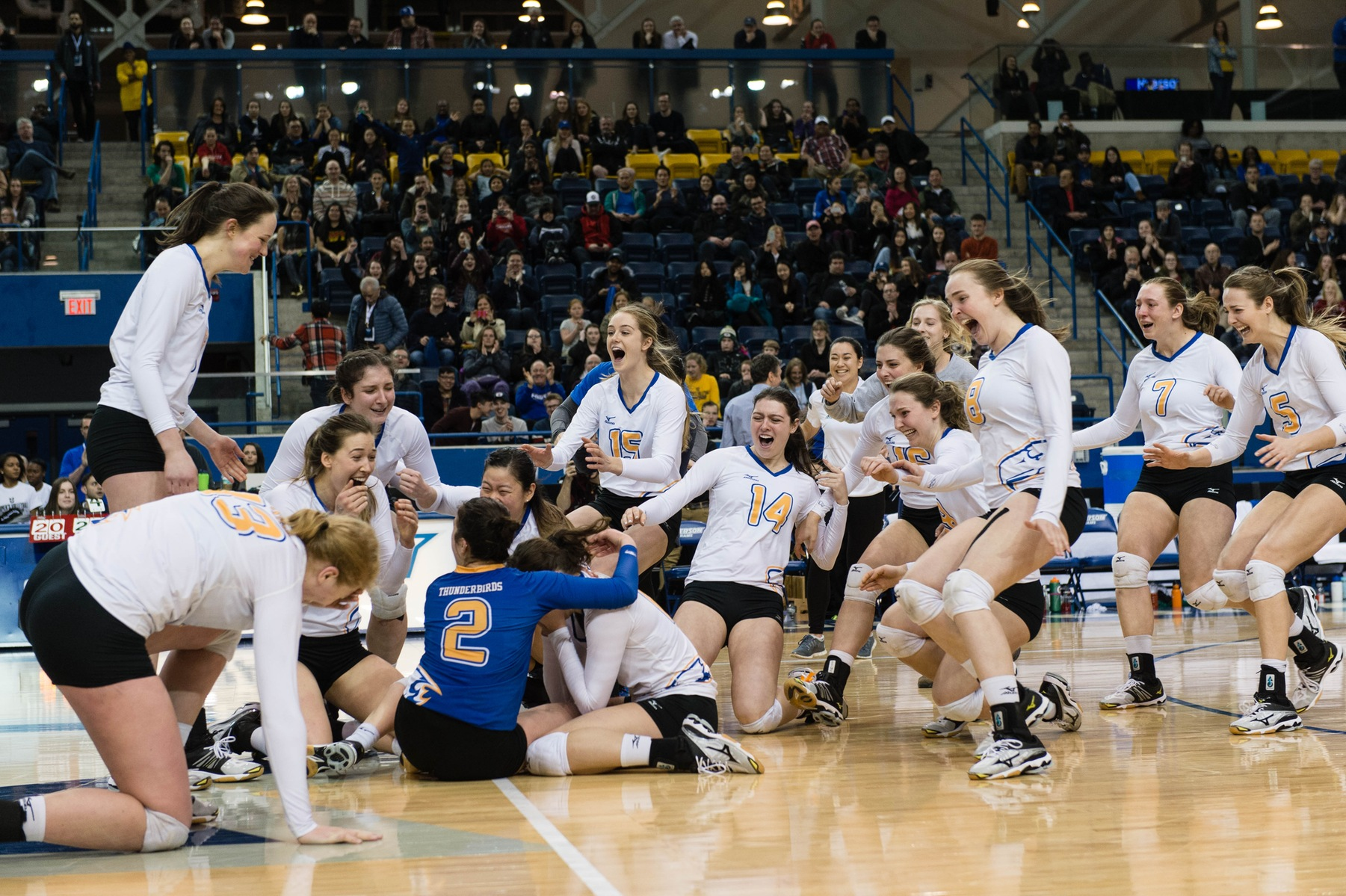 2017 U SPORTS Champions Series: Veteran Thunderbirds earn women's volleyball redemption