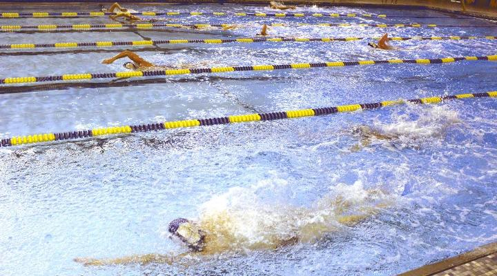 Swimming Competes At Swartmore
