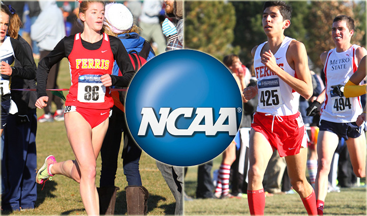 IMPRESSIVE DAY: Men's Cross Country Takes 10th & Johnson 5th In Women's Race At NCAA Nationals