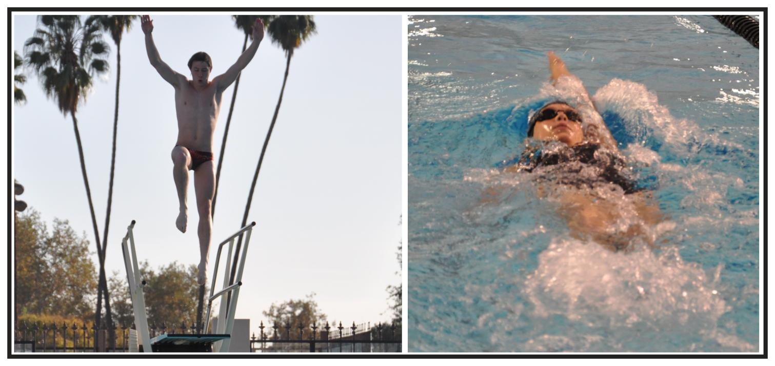 Caltech Swimmers and Divers Start New Campaign