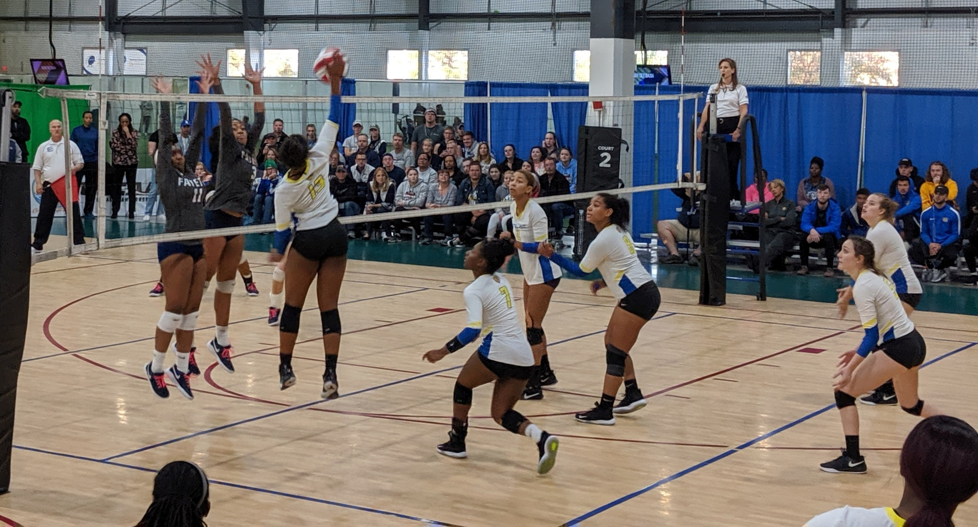 Volleyball Comes Up One Match Short in Title Defense