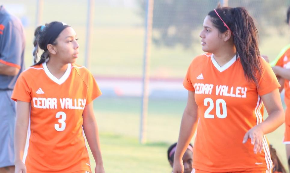 Lady Suns Shutout by North Lake, 3-0