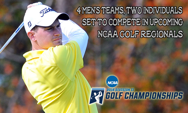 Four NE-10 Men's Teams, Two Individuals to Compete in NCAA Golf Regionals