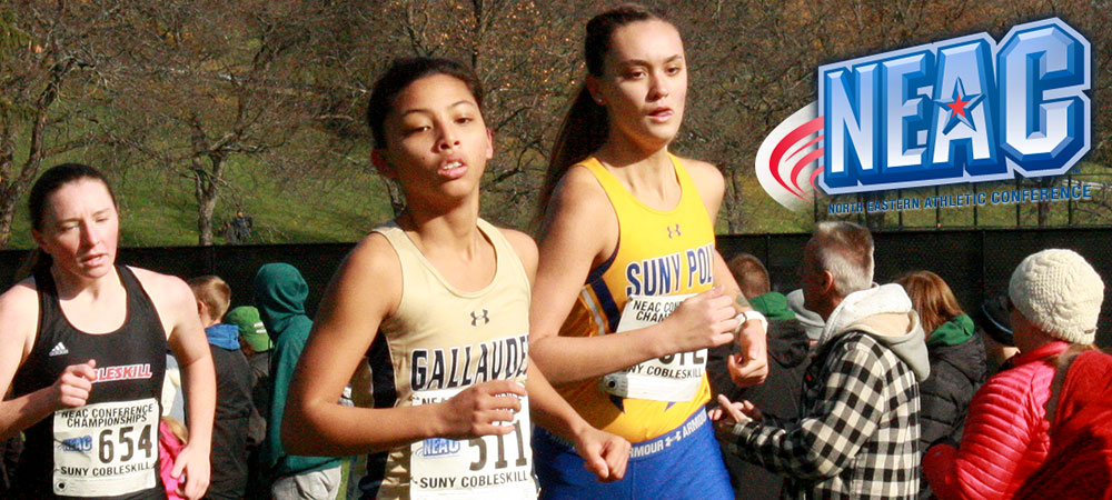 Gallaudet women's cross country runner Courtney Hocog runs at the 2019 NEAC championships in Cobleskill, N.Y., during the day time. A NEAC logo is in the upper right corner.