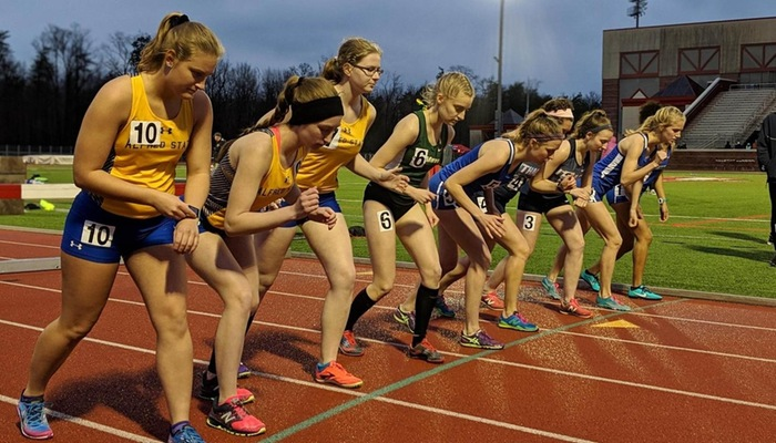 Starting line of the Steeplechase