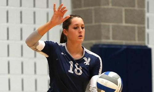 Balanced Effort Leads UMW Volleyball Past Albright and Baruch in 2014 Season Openers