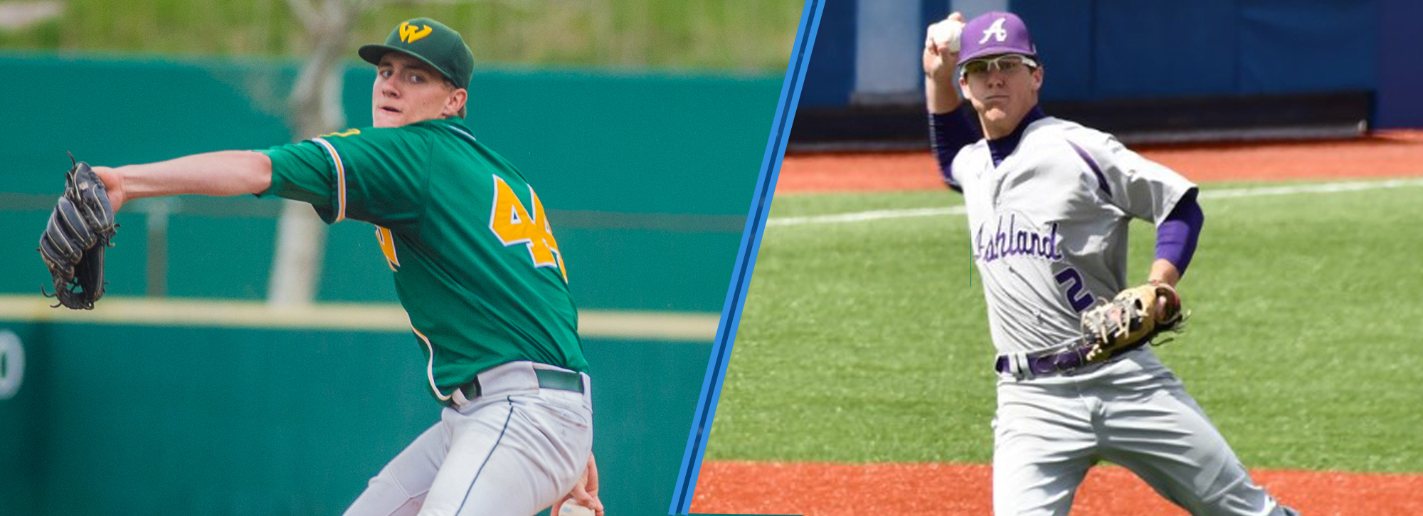 Twelve GLIAC players earn D2CCA all-region honors; Brown named pitcher of the year