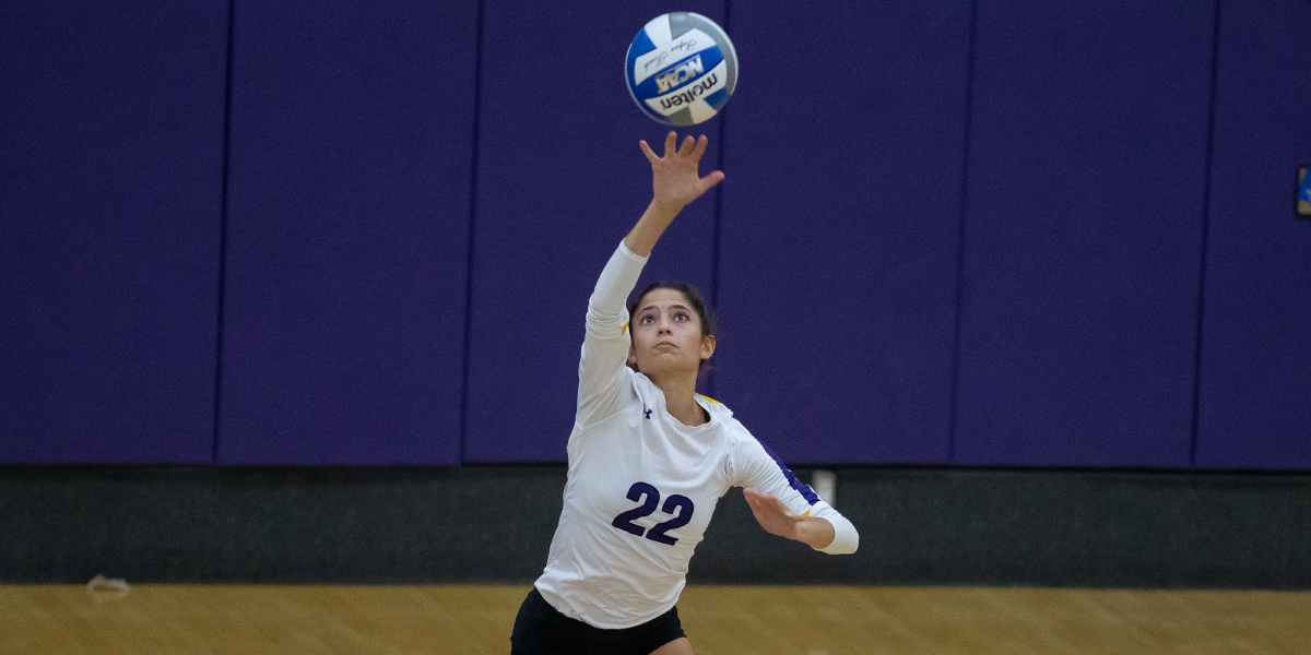 Volleyball pushes Chapman late but falls in four