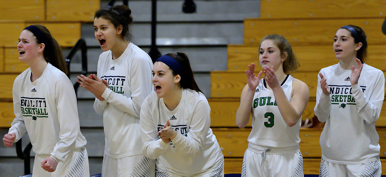 Endicott women's basketball bench players celebrate a basket.