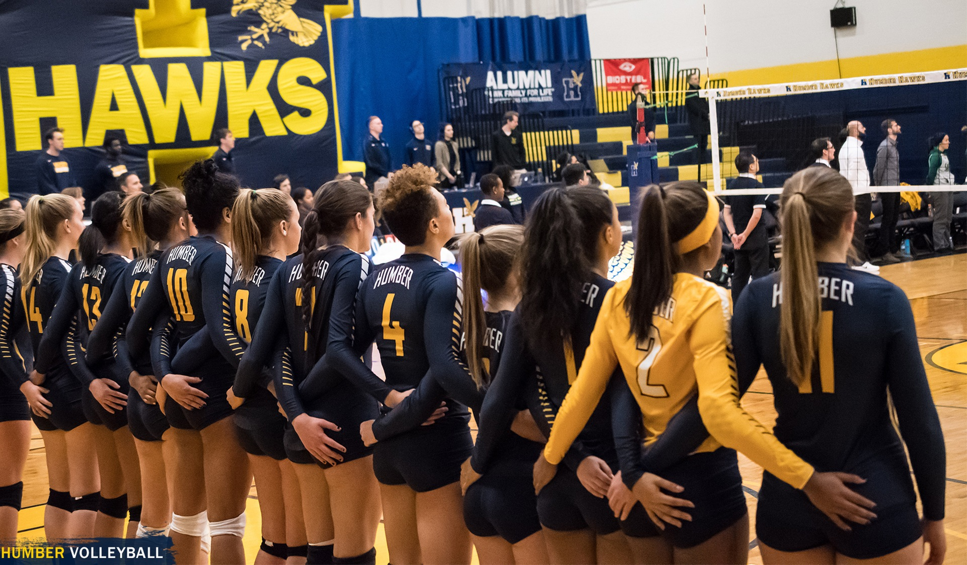 Women's Volleyball Release Open Tryout Dates