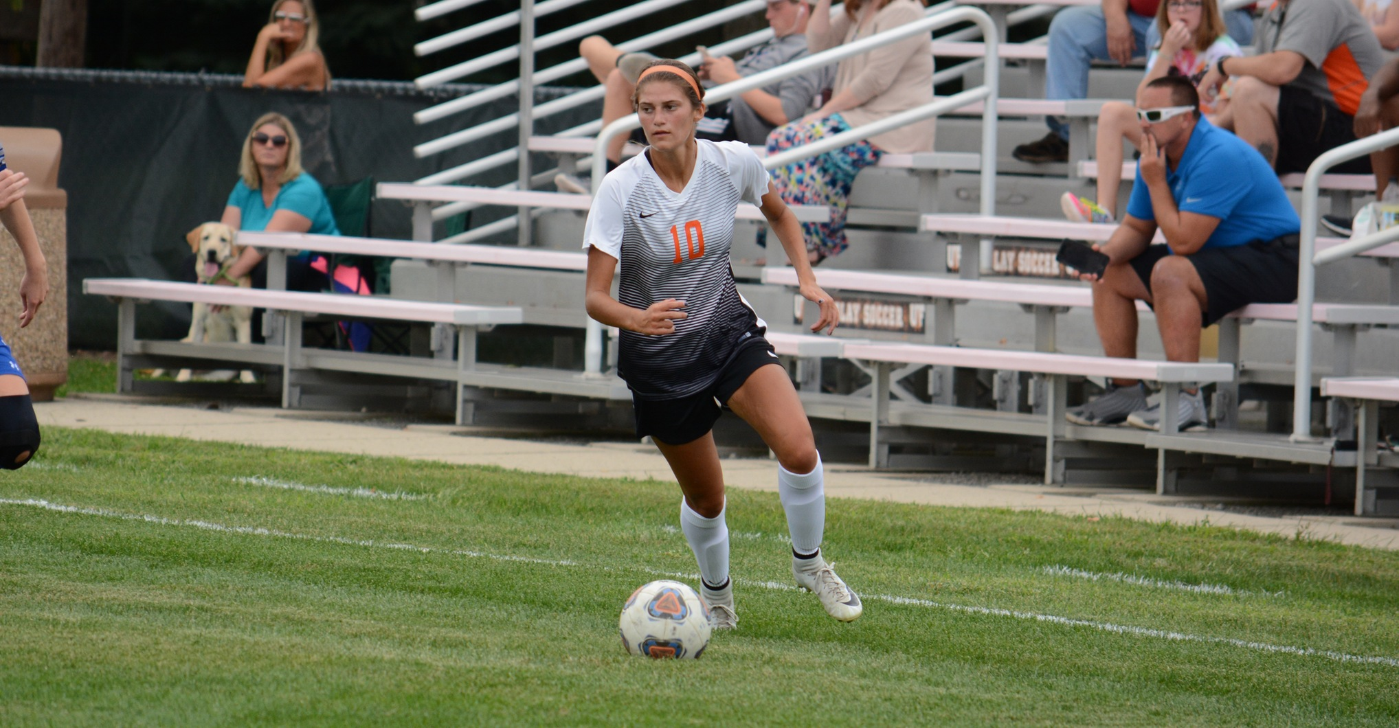 Findlay Remains Unbeaten | Earns Comeback Win at Malone