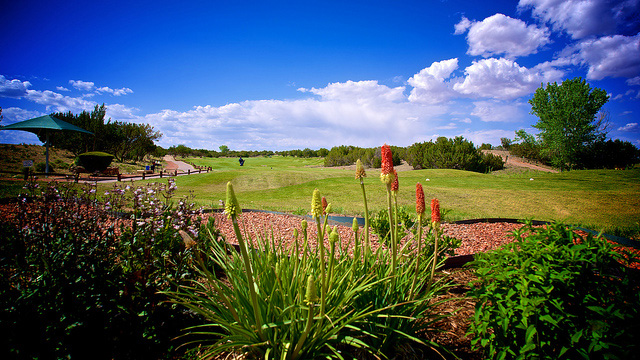 NMJC Golf Opens Season with a #10 National Ranking