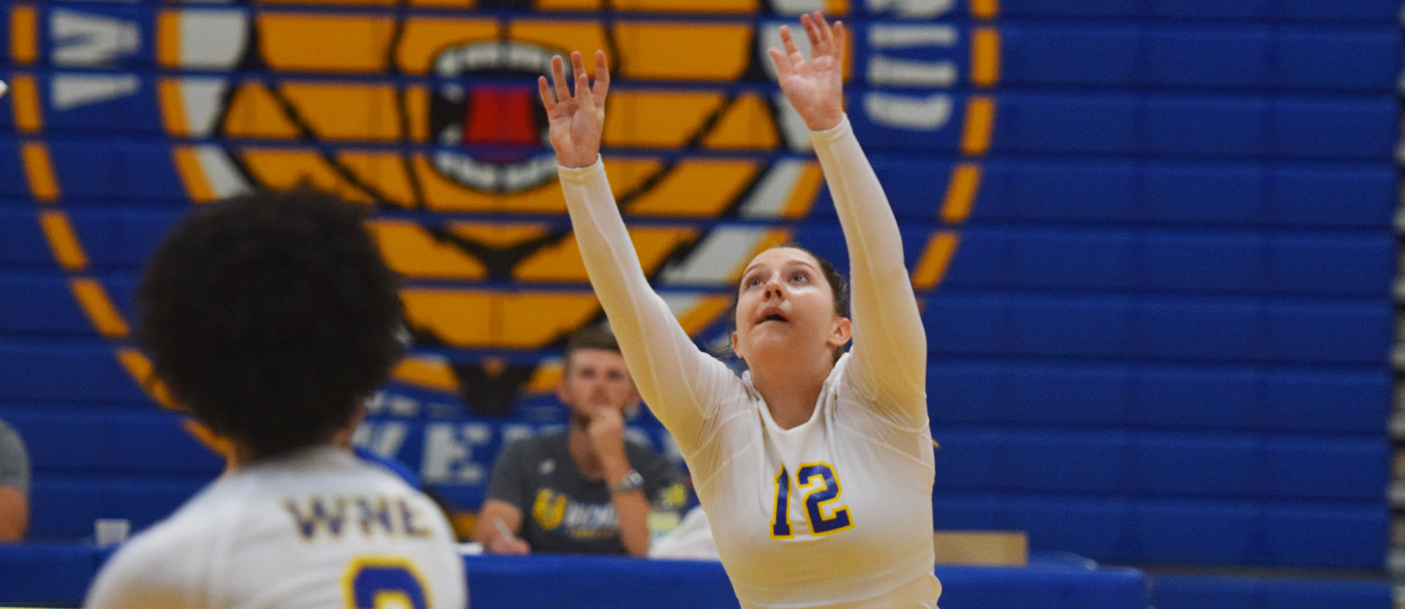 Sophomore setter Jenna McCormack racked up a career-high 45 assists in Western New England's 3-1 win at Elms on Tuesday. (Photo by Rachael Margossian)