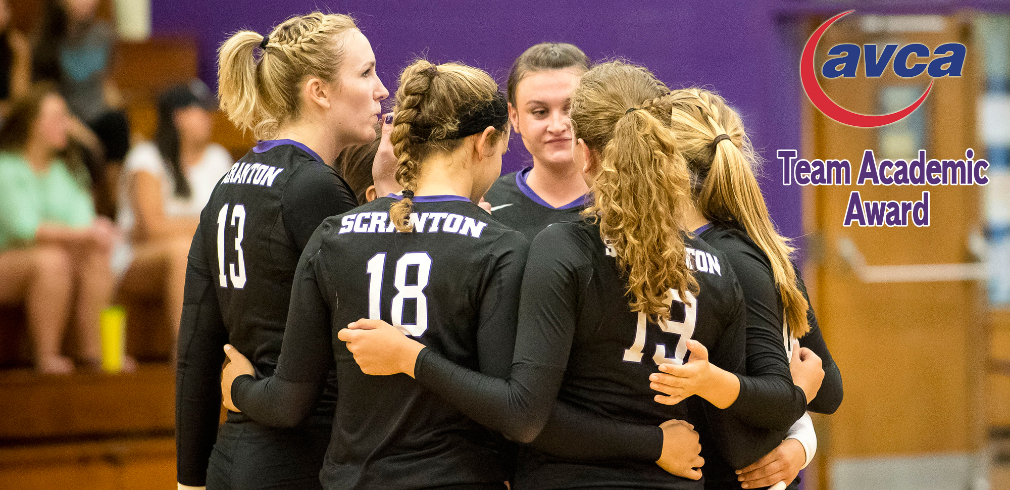 Volleyball Program Earns AVCA 2016-17 Team Academic Award