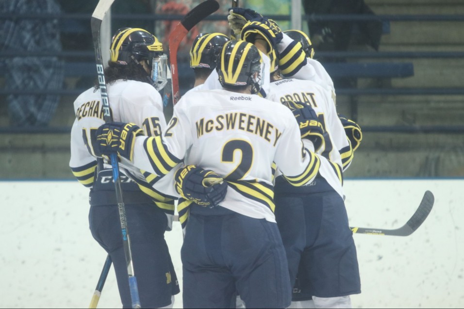 Wolverines take shootout win over Panthers