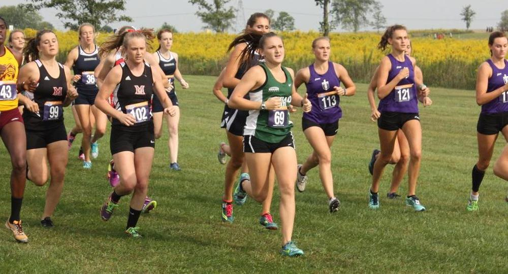 Cross Country Has Strong Showing At All-Ohio Championship