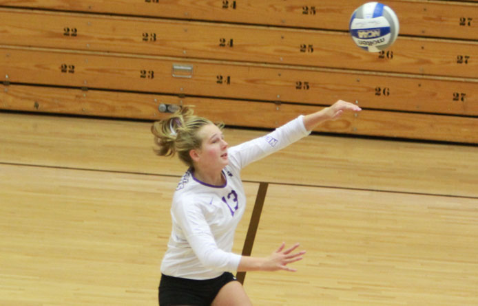 Women's volleyball opens home weekend with loss to Le Moyne