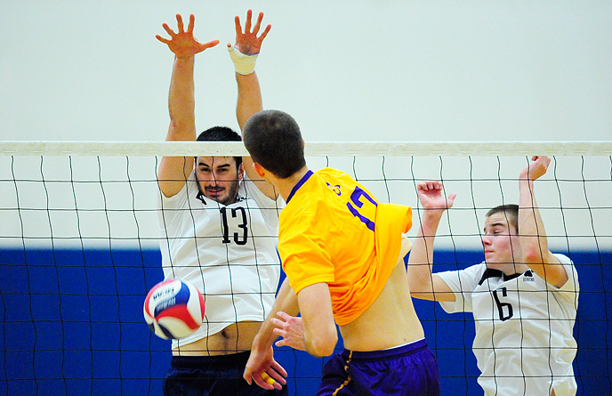 Lions Upset Sixth-Ranked NYU; Behrend Falls in UVC Semifinals