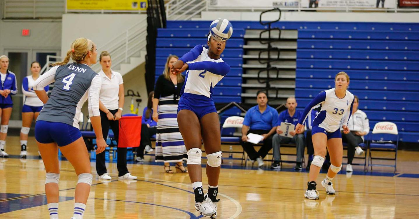 Volleyball Splits on Final Day of Home Invitational