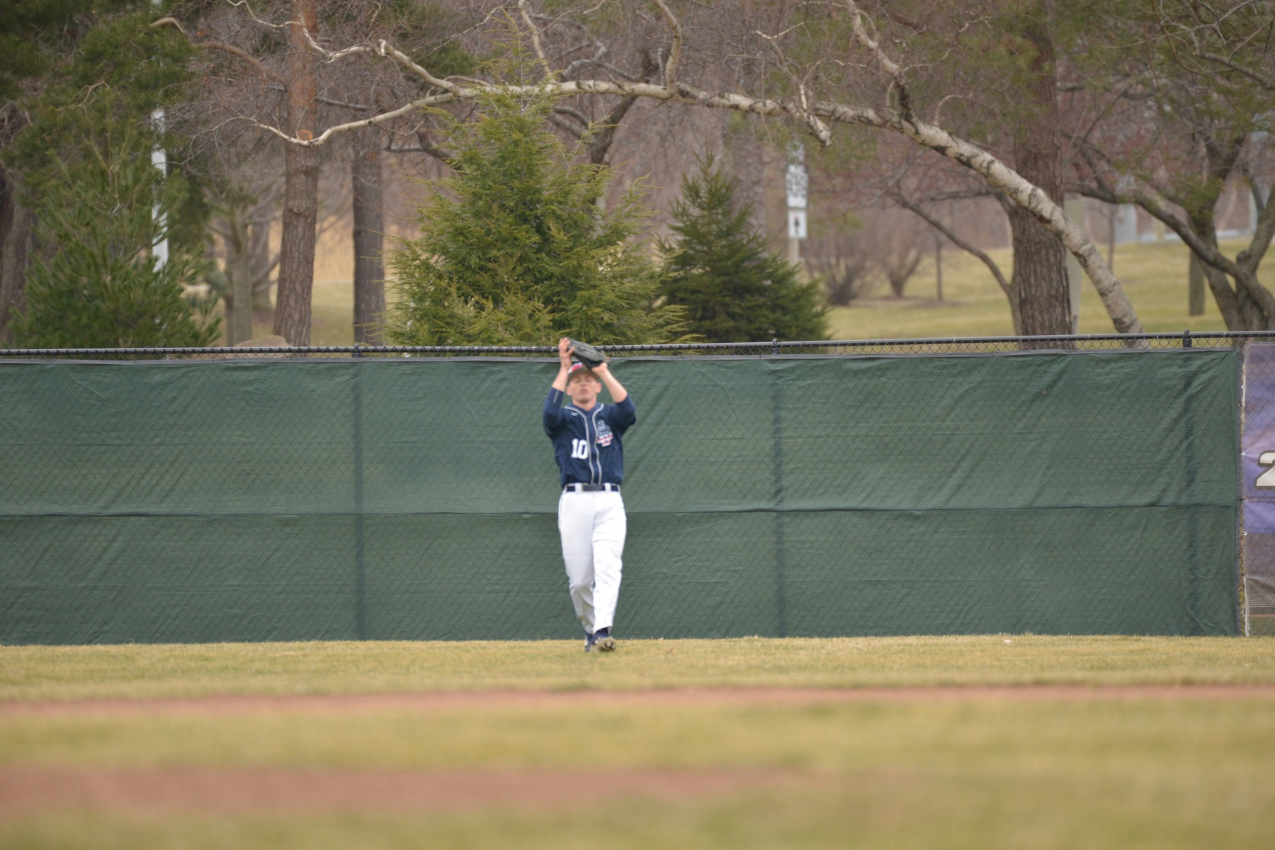 Baseball Falls to Allegheny