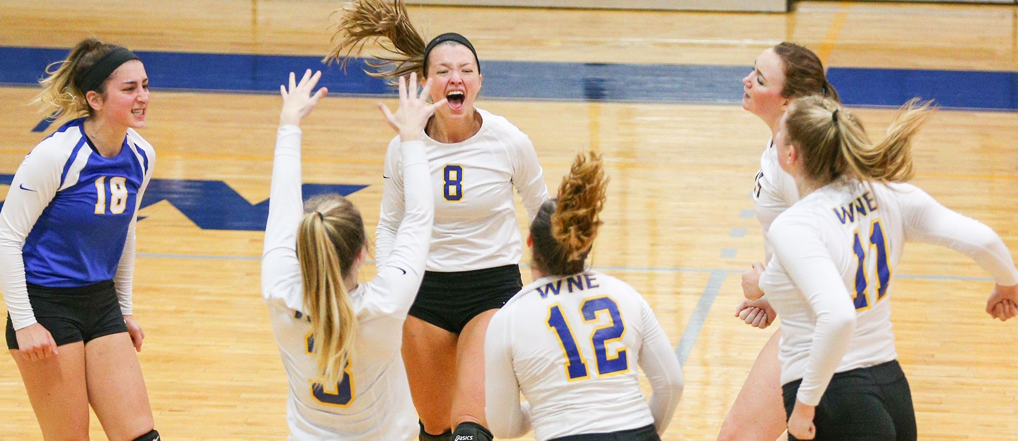 Western New England rallied from a 2-0 set deficit to defeat Emmanuel 3-2 on Thursday evening. (Photo by Chris Marion)