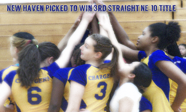 Chargers Picked to Win NE-10 Volleyball Title
