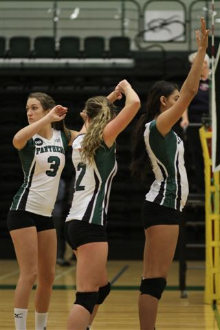 Volleyball Panthers to attend CN Invitational