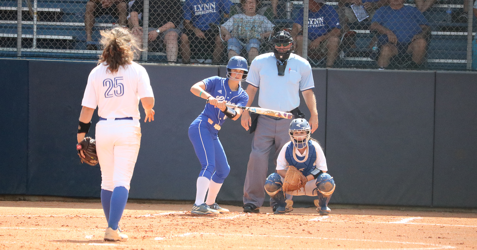 Rollins Takes Series Against Softball