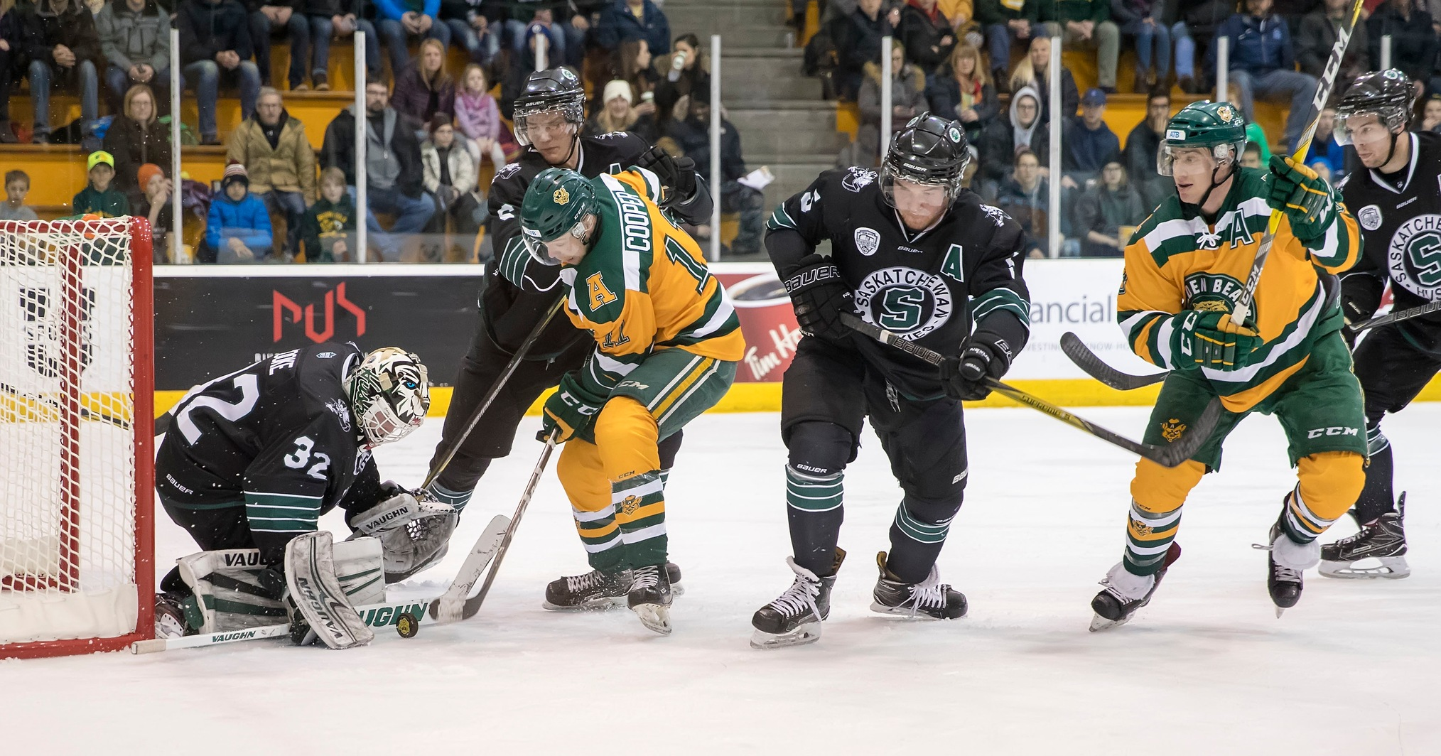 Men's hockey swept by Golden Bears in Edmonton