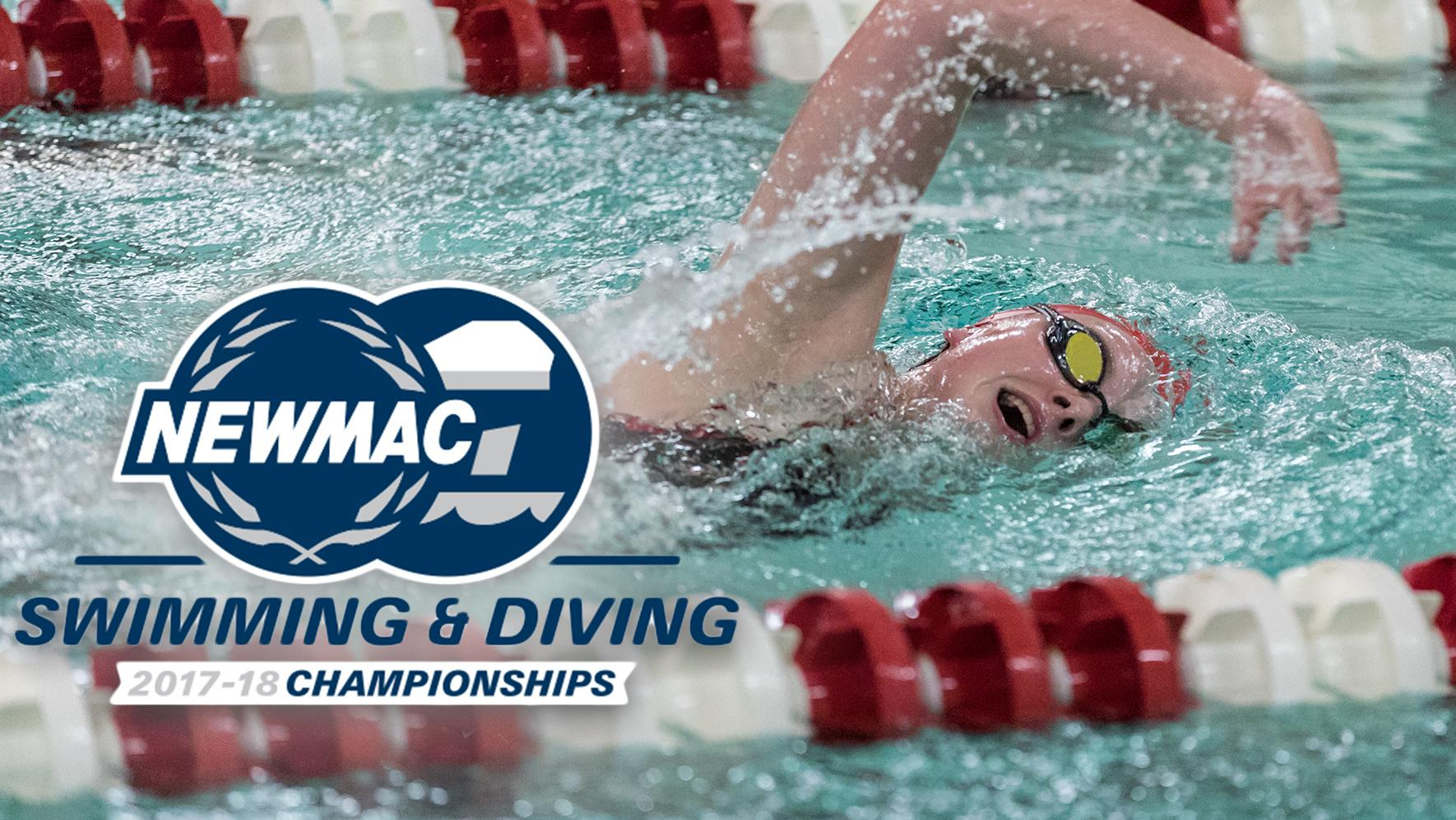 Women's Swimming and Diving NEWMAC Championship Preview