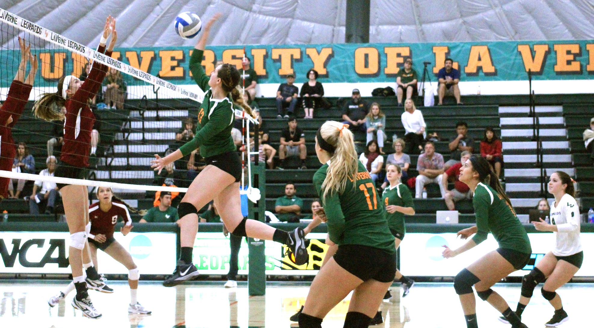 No. 15 Volleyball sweeps Chapman at home
