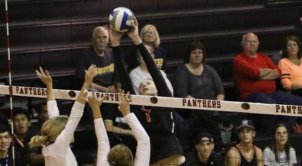 Women's volleyball set back by Webster