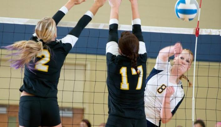 Volleyball Snaps Seven Game Win Streak, Suffers Two Losses