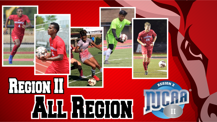 Eight Bucks Named to All-Region and All-Tournament Teams