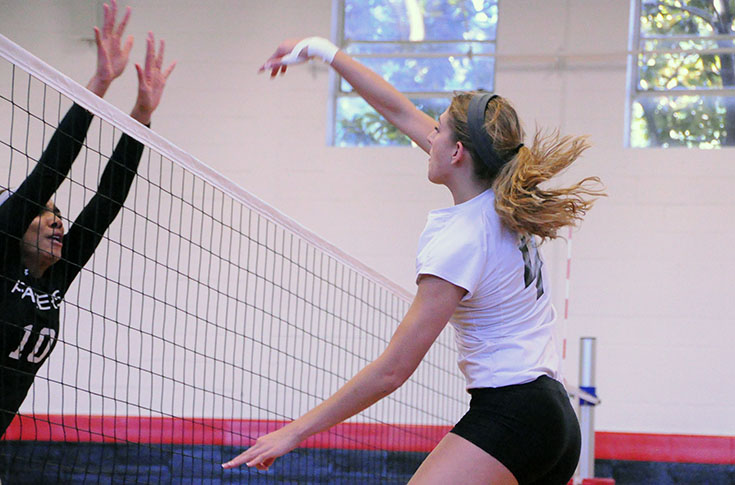 Volleyball: Panthers split two matches at USA South quad match