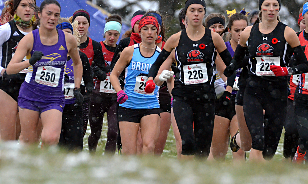 Women eighth, men fourth at cross country nationals