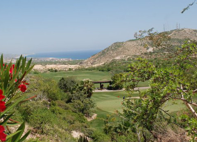 Houston Leads the Cabo Collegiate After Round One