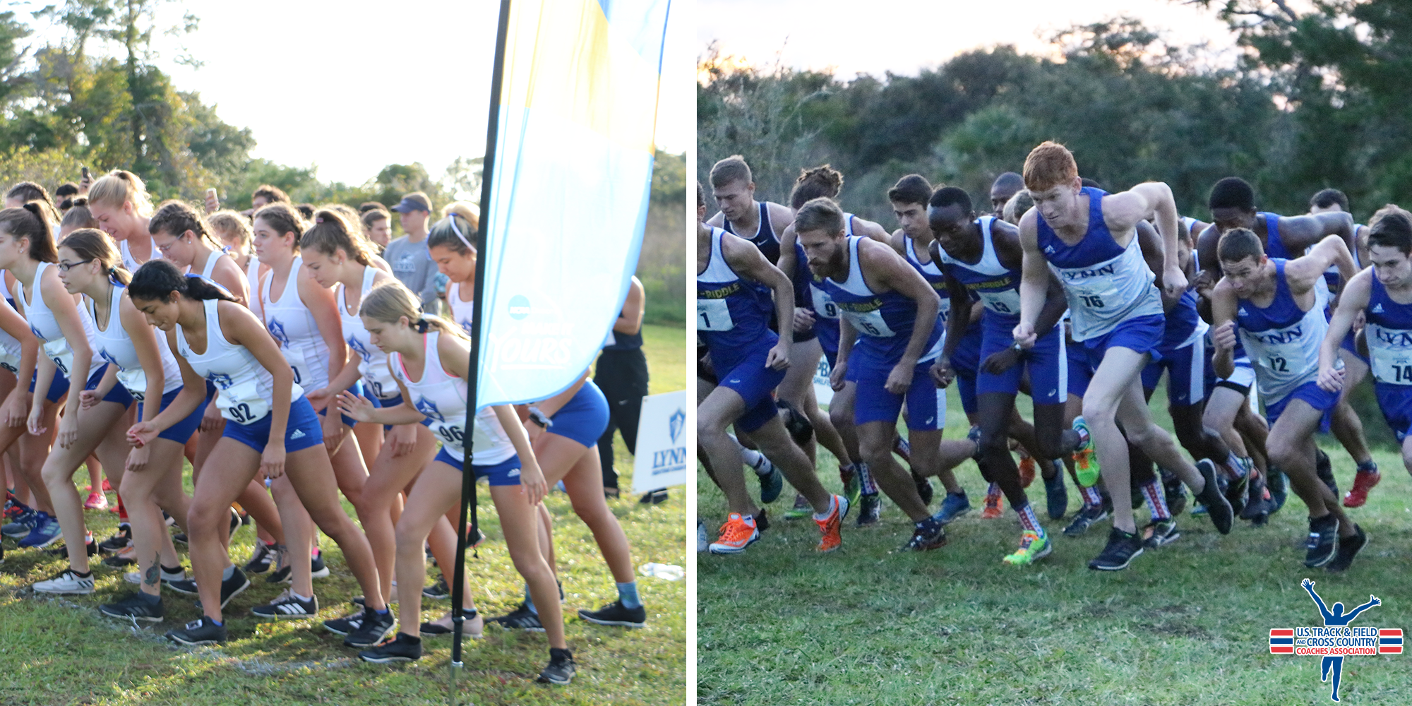 Cross Country Programs Honored by USTFCCCA for Academic Excellence