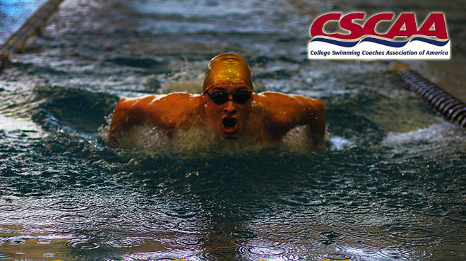 SCAC Has Seven Squads Receive Spring 2013 CSCAA Scholar All America Awards