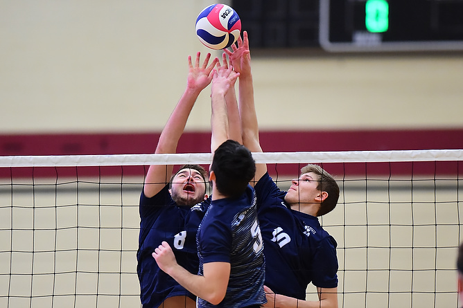 Behrend Lions Handle Medaille