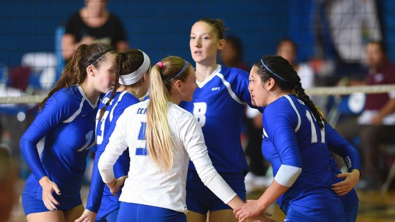 Volleyball Finishes Play at the Hartford Invitational Saturday