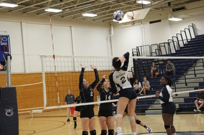 Volleyball Falls in PSUAC Opener to Beaver