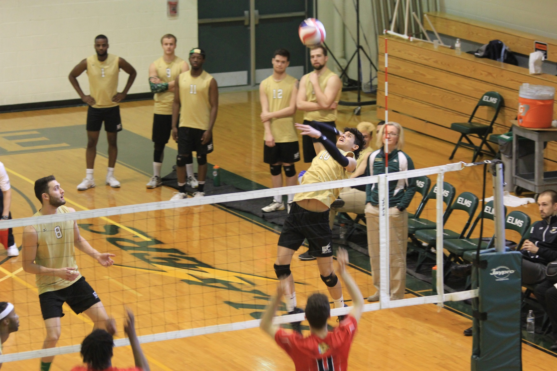 Endicott Edges Men's Volleyball In Four Sets